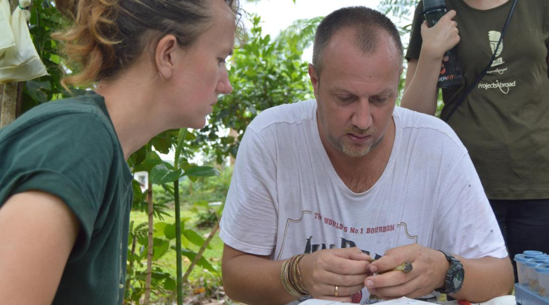 Amazon Rainforest Conservation volunteers analyse data on the wildlife spotted in Peru